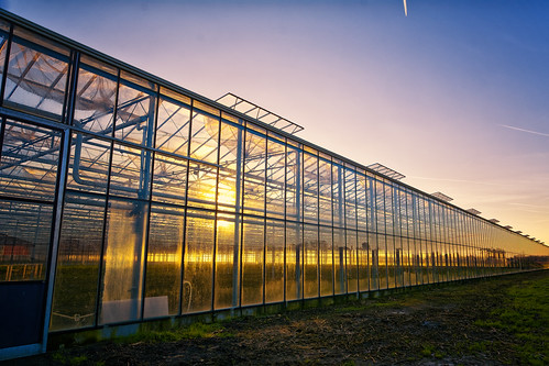 Suncatching Greenhouse