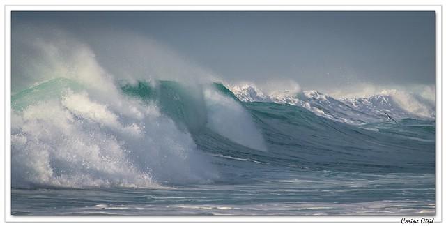 La vague et le, Pentax K-5 II, smc PENTAX-DA* 300mm F4 ED [IF] SDM