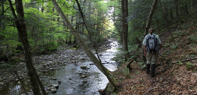 Hiking the Fishermans Path along the East Branch of the Neversink River