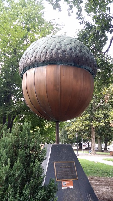 Giant Acorn in Raleigh NC