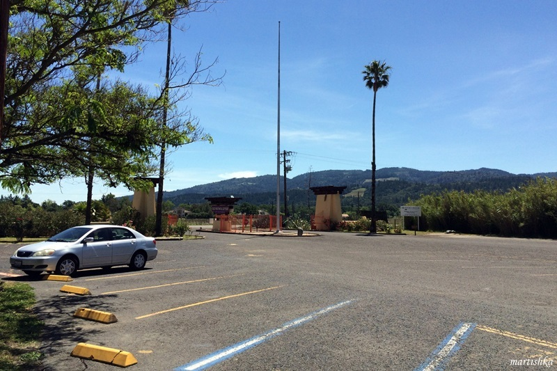 Calistoga_Old Faithful (1)