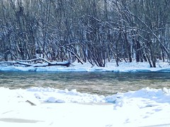Snowy river view - Beaty Landing