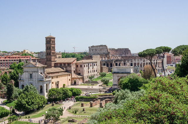 20150518-Rome-Roman-Forum-View-from-Palatine-Hill-0194