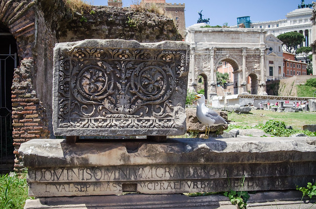 20150518-Rome-Roman-Forum-0240