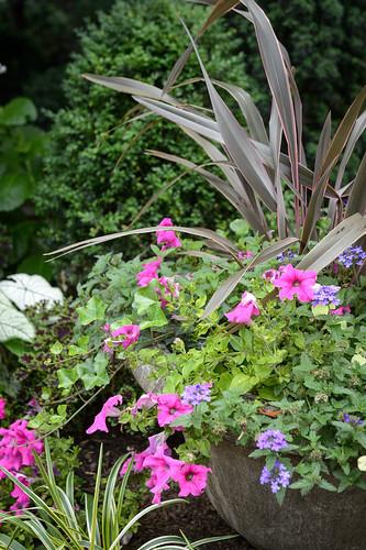 FilipWolak-LSBID-Gardens-8313