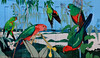 Cyclopsitta diopthalma coxeni - Coxon's Fig Parrot (Left), Alisterus scapularis - Australian King Parrot (Right)Treasures of the Tweed Mural Murwillumbah, NSW by Black Diamond Images