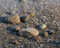 Little Pebbles