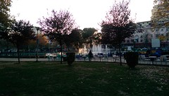 Parku Rinia, Tirana