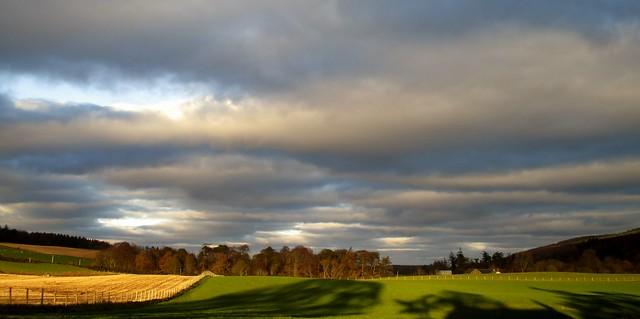 19/365 Invernessian sunshine, Canon IXUS 150