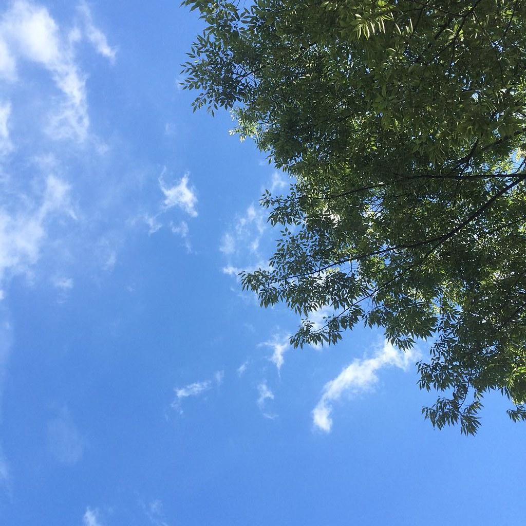 #sky #イマソラ 夏。