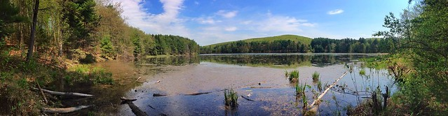 Cranberry Pond panorama
