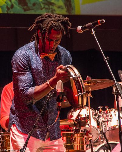 Plena Libre, 2015 Concert of Colors, Detroit