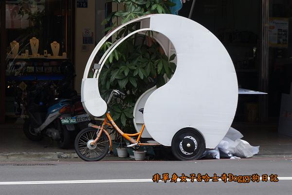 台中秋紅谷24