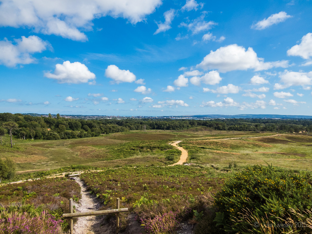 View over Upton Heath