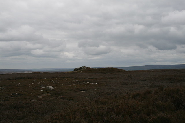 """Tumulus on Gisborough Moor (which may or may not be the """"summit"""")"""