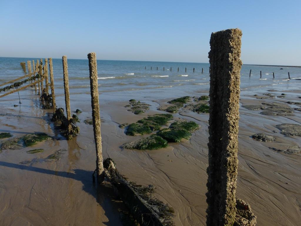 Warren Beach (Folkestone) at low tide Folkestone Circular walk