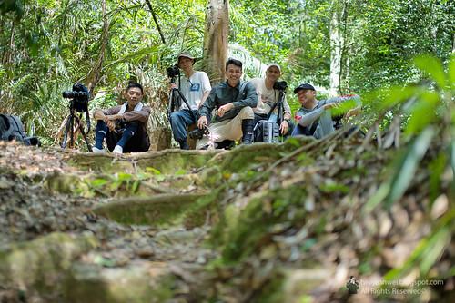 Khao Yai National Park 10 heejennwei v2