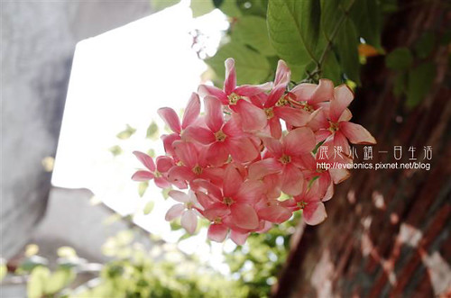 R0200805s(Small)