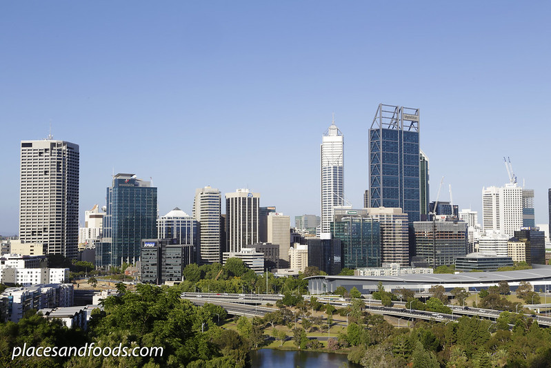 day 4 kings park perth city view