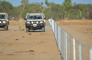 26 July, 2015 - 21:49 - Rangers constructed and now maintain 5km of fencing erected around Lotus Lagoon to prevent access by feral animals and domestic cattle.