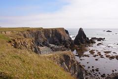 Point St George