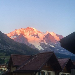 We caught the last of the evening's light on the Jungfrau after dinner