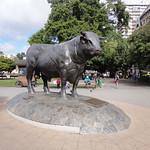 Toro plaza