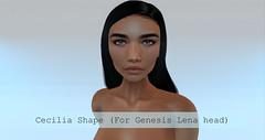 [Atonement] Cecilia Shape (Genesis Lena)