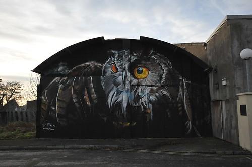 graphite owl