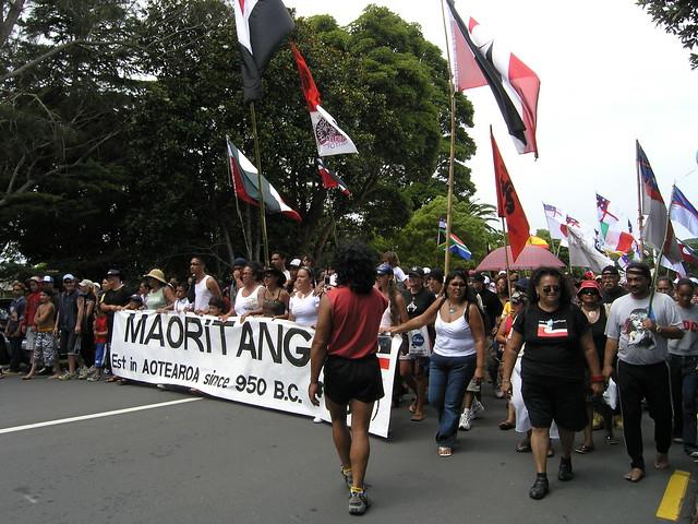 Annual Maori protest 5 - Waitangi Day