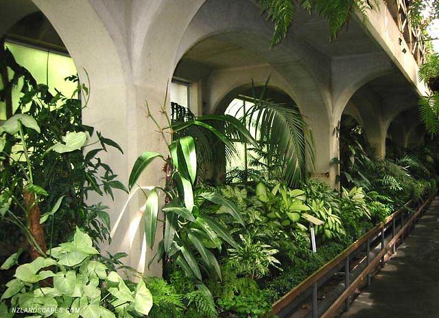 Nz garden designers landscaping ideas for new zealand for Grow landscapes christchurch