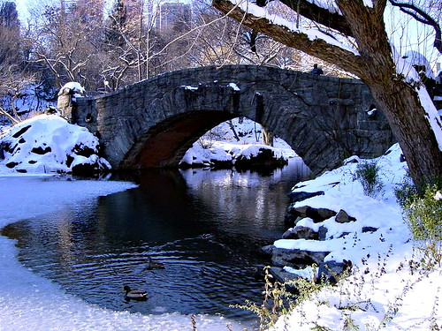 Gapstow Bridge in Winter