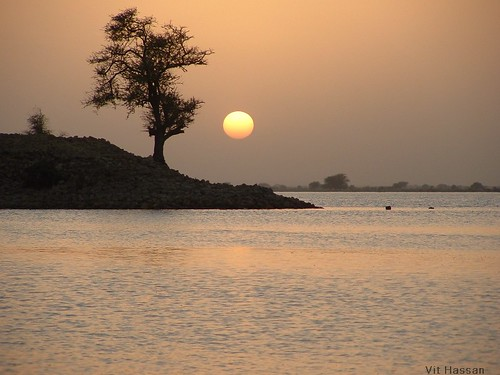 sunset tree nature silhouette river bravo image quality sudan nil fivestarsgallery