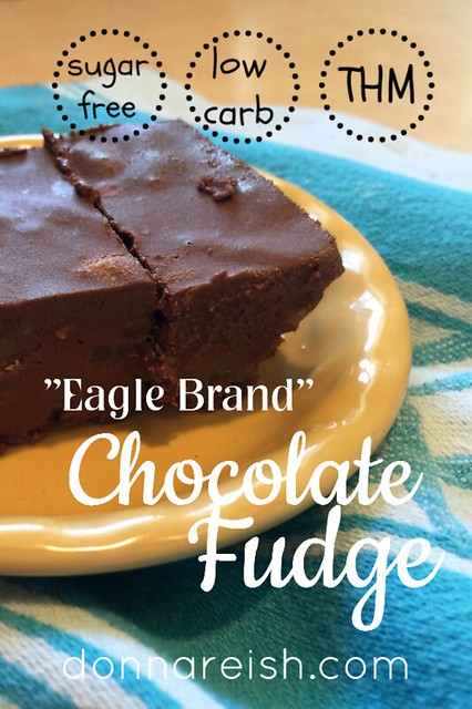 Eagle Brand Chocolate Fudge [Sugar-Free]