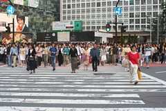 road, crowd, town square, street, pedestrian, infrastructure, pedestrian crossing, zebra crossing,