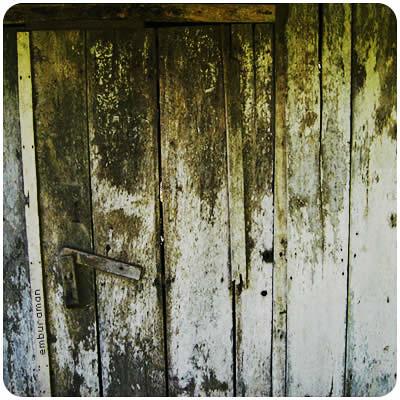 Old Mossed Door