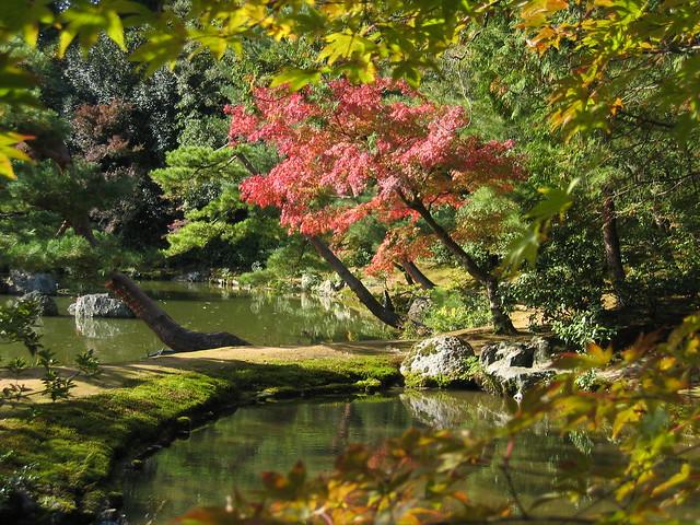 gardens around Kinkaku-ji 金閣寺