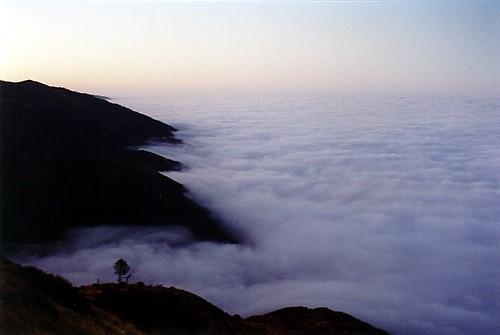 california fog sunrise ilovenature dawn interestingness bigsur lospadresnationalforest sanmartintop explored sanmartintop2001