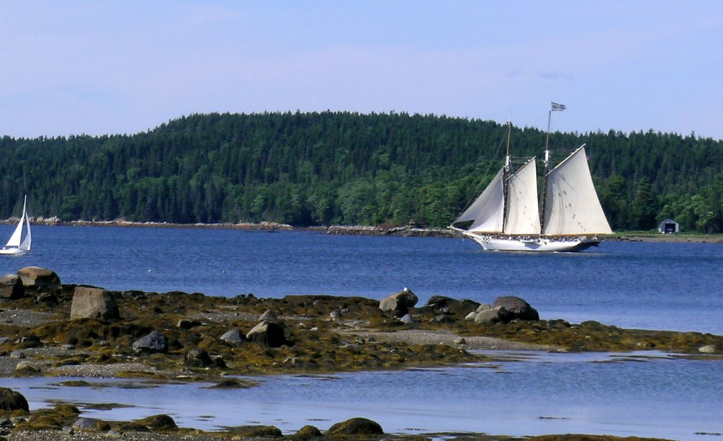 sailboats in Maine