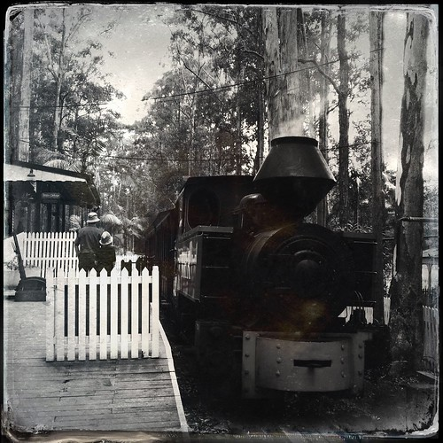 history nsw lesson timbertown wauchope midnorthcoast