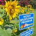 NCDOT_WF_Pollinator_Sunflower_Bee2-1 by NCDOTcommunications