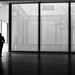 windows by Georgie Pauwels