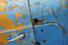 DSC_2149 [ps] - Decorative Rust