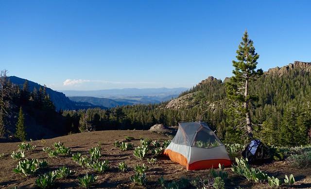 Campsite, June 13
