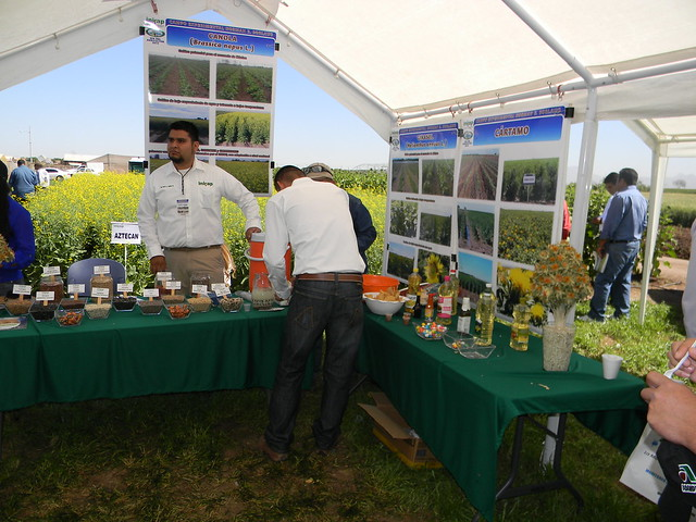 Día del Agricultor 2013
