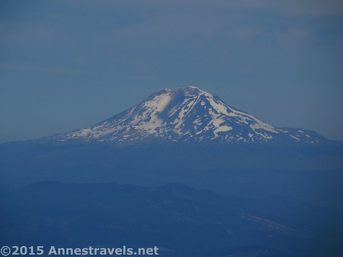 Stately Mt. Adams from the Cooper Spur Trail, Mount Hood National Forest, Oregon