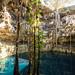 Oxman cenote por Andrea Schaffer