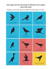 Wild Birds of LA