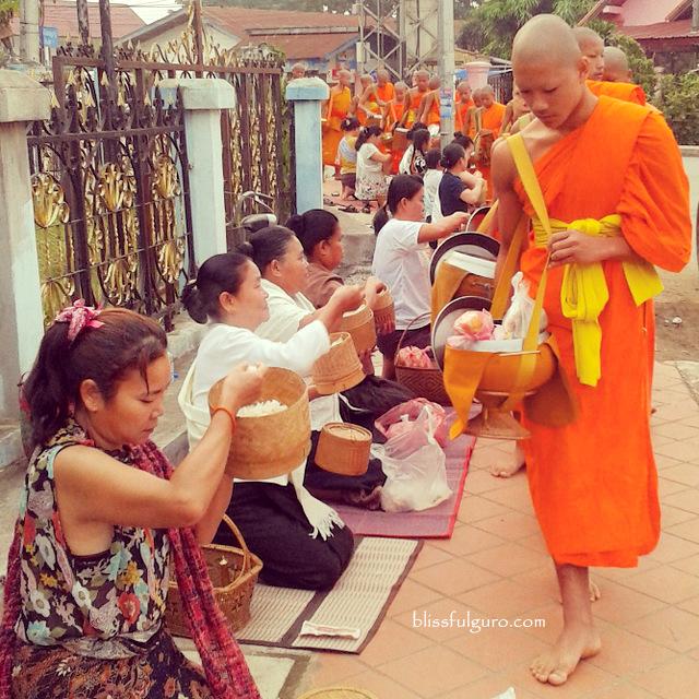Monks Alms Giving Luang Prabang Laos