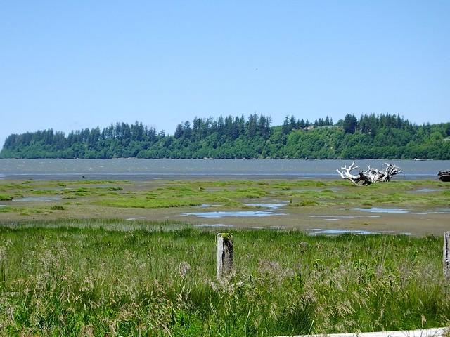 Grays Harbor National Wildlife Refuge